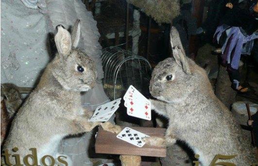rabbit-rummy.jpg