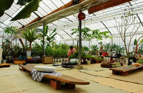 indoor-garden2